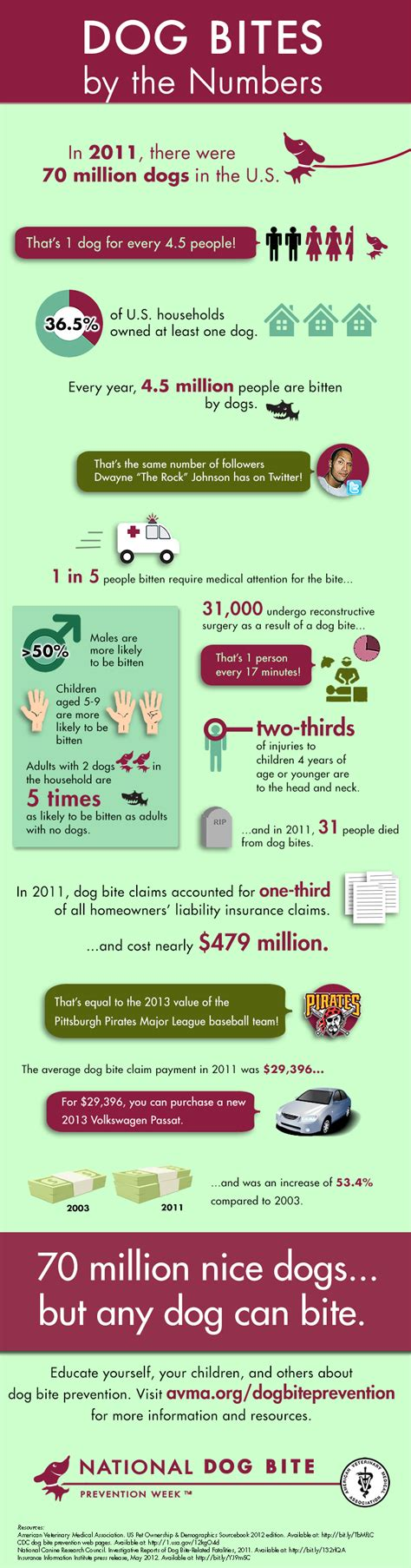why do dogs bite their bites let s consider the root causes and prevention