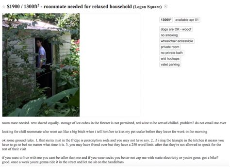craigslist room wanted this craigslist roommate ad is seriously