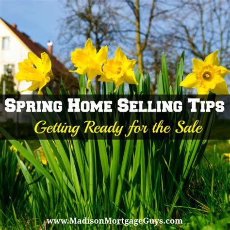 spring home tips real estate round up march 2016