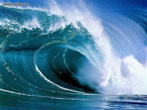 3d Wallpaper For Home Wall India by Nature Australian Wave Picture Nr 4502