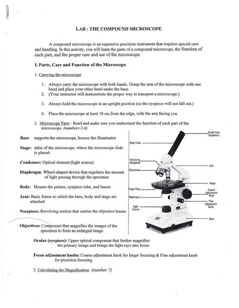 Parts Of A Microscope Worksheet Answers by Idea Worksheets Grade 6 Abitlikethis