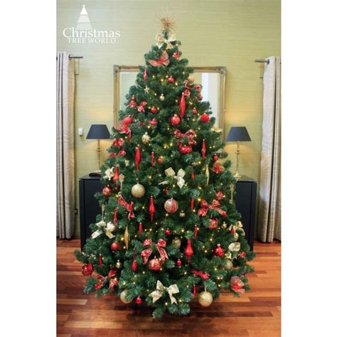 best price real christmas trees in plymouth the 8ft arbor vitae fir tree tree world