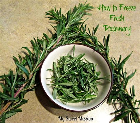how to freeze fresh rosemary my sweet mission