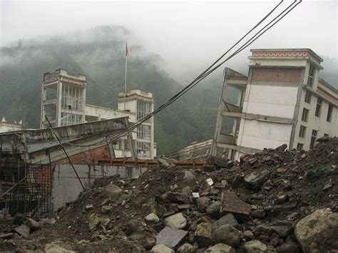 earthquake and structures journey to wolong letters to milo