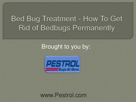 bed bug treatment nyc bed bug treatment nyc how to get rid of bedbugs permanently