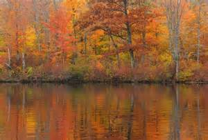 fall color wisconsin photo gallery wisconsin fall colors wolf s vision