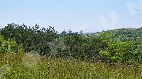 in vendita croazia terreno in vendita a grisignana groznjan croazia