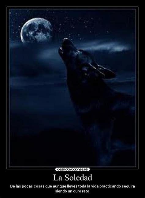 imagenes de lobos tristes la soledad desmotivaciones