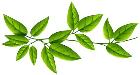 leaf pattern png green leaves png image veerendra vijaya pinterest