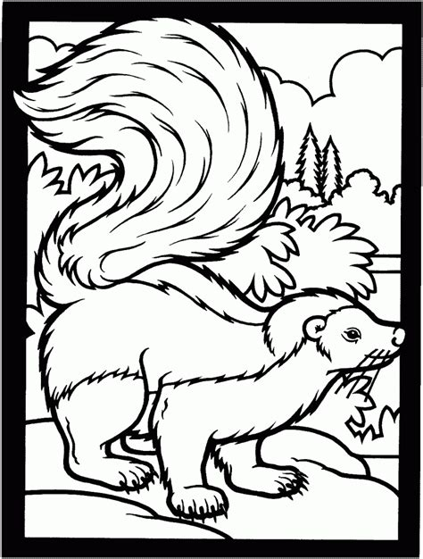 free printable coloring pages free printable skunk coloring pages for