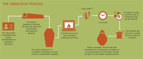 how early do they do a planned c section the cremation process understanding how it works step by