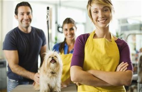 the average salary of professional groomers chron