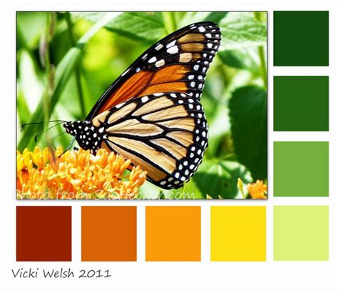 monarch color monarch fabric palette pantones palettes
