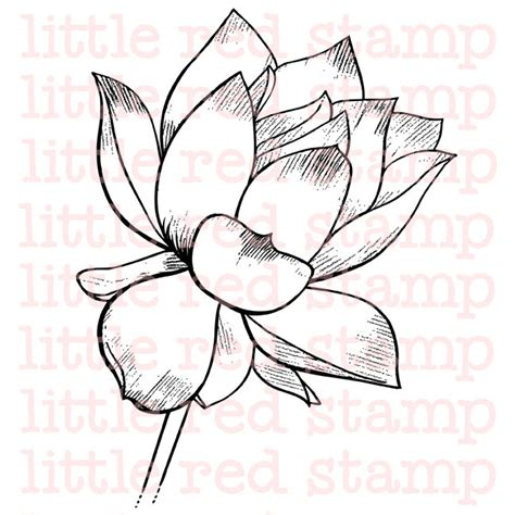 printable pictures of lotus flowers lotus flower digi st instant download drawing printable