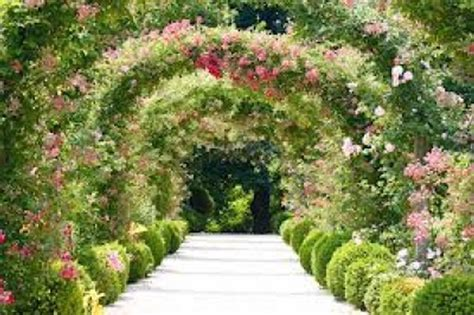 il giardino fiorito giardino fiorito