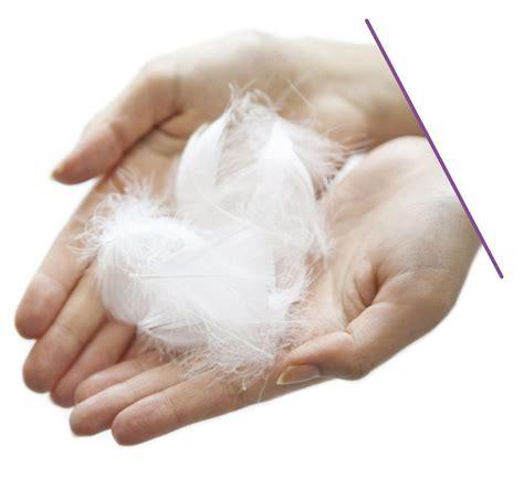 cuscino piume d oca cuscino 100 piuma d oca cotone biologico pillux