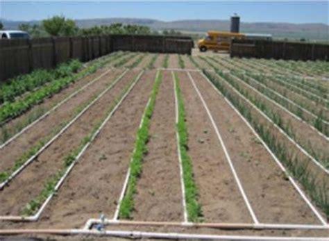 Great Idea Designing A Basic Pvc Home Garden Drip Vegetable Garden Irrigation Systems Design