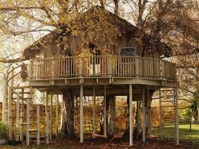 awesome tree houses 20 incredible tree houses from around the world ginva