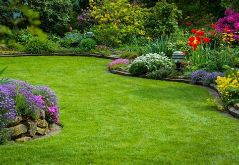 Pflanzen Und Garten by Zierstr 228 Ucher Pflanzen Und Pflegen Obi Ratgeber