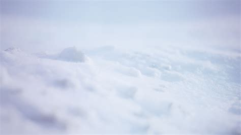 20 Hq Snow Backgrounds Wallpapers Images Freecreatives Snow Background For Powerpoint