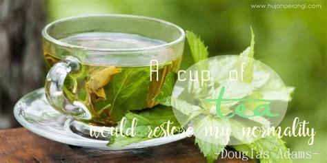 Teh Hijau Sekarang serba serbi teh hijau dan khasiatnya hujanpelangi