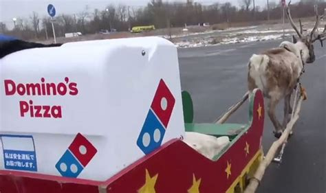 domino pizza delivery nomor domino s pizza could soon be delivered by reindeer as they