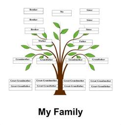 Leaf Template For Family Tree by Simple Family Tree Template 25 Free Word Excel Pdf