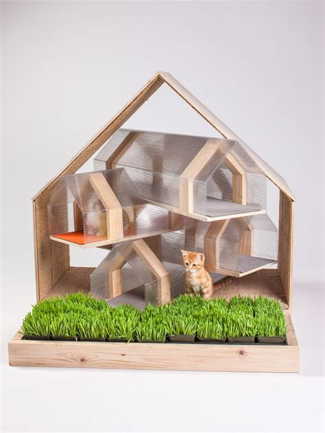 designs for felines 12 cool cat houses hgtv