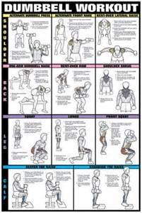 17 best ideas about dumbbell workout program on