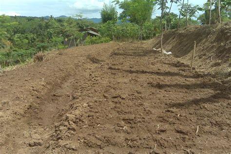 Pupuk Untuk Tanah Merah cara budidaya bawang merah di lahan kering waras farm
