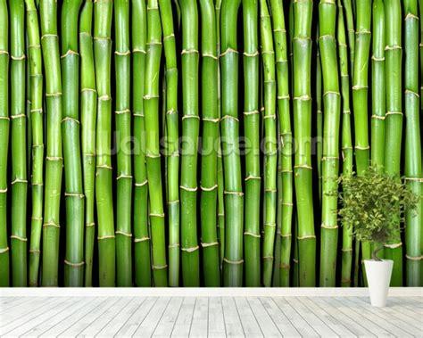bamboo wall mural bamboo wall mural bamboo wallpaper wallsauce