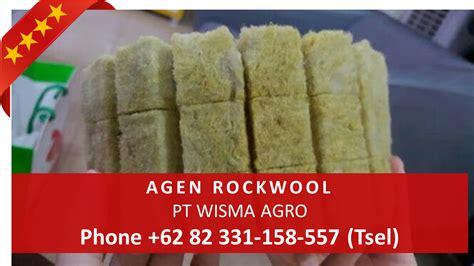 Jual Rockwool Hidroponik Di Medan toko hidroponik murah jual peralatan hidroponik alat