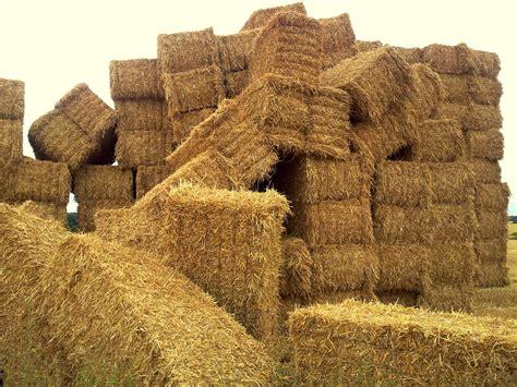 giant haystacks velo richard