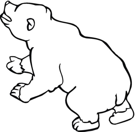 brown bear 10 coloring page supercoloring com