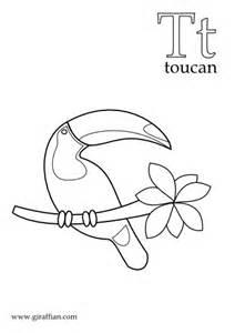 toucan coloring page toucan giraffian kid s stuff