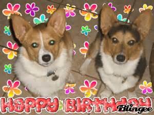 corgi birthday picture 4620541 blingee com