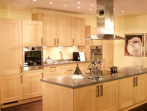 European Kitchen Design The Kitchen Design European Kitchens Designs