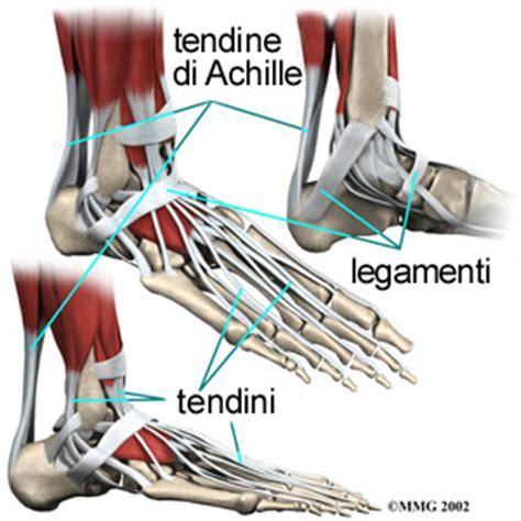 fastidio interno ginocchio dolore alla caviglia