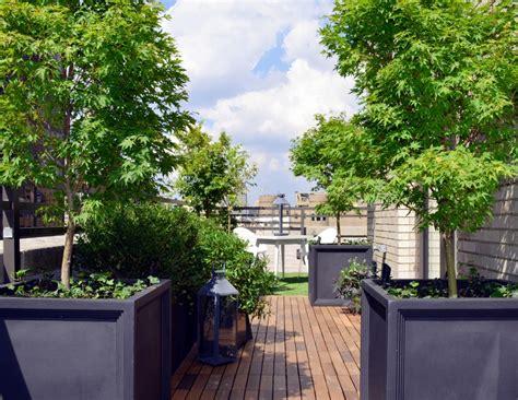 decoracion terrazas aticos fotos foto terrazas 193 ticos muy verdes de miriam mart 237 841593