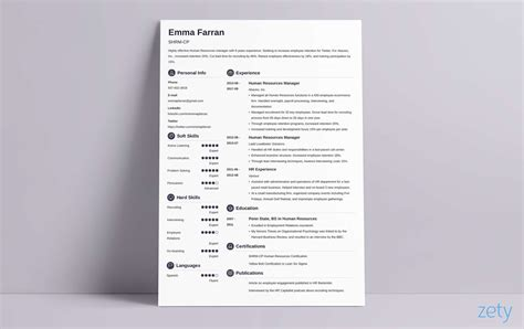 resume professional summary new 266 best resume examples images on