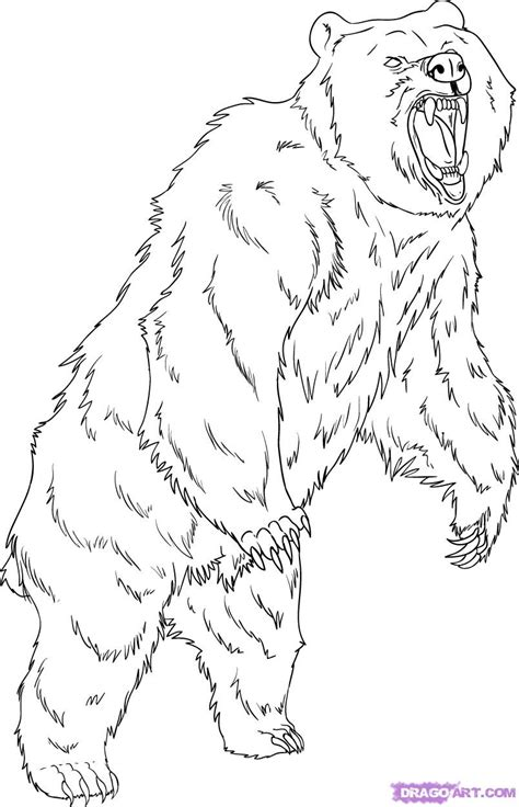mean bear coloring page grizzly bear coloring pages how to draw a grizzly bear
