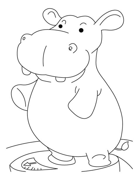 Coloring Page Hippo by Free Coloring Pages Of H For Hippo