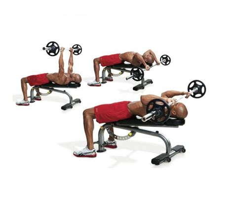 tricep extension bench 5 triceps workout for your everyday workout trainer