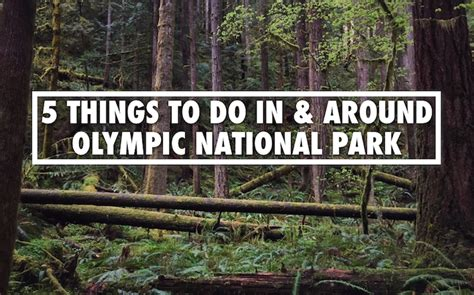 5 Things To Do by 5 Must Visit Places Things To Do Olympic National Park