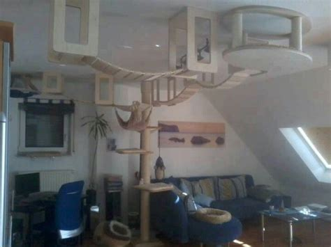 cat tree house 1000 ideas about cat tree house on pinterest pet houses cat trees and cat tree condo