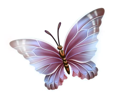 Dale Butterfly L by Gifs Papillons