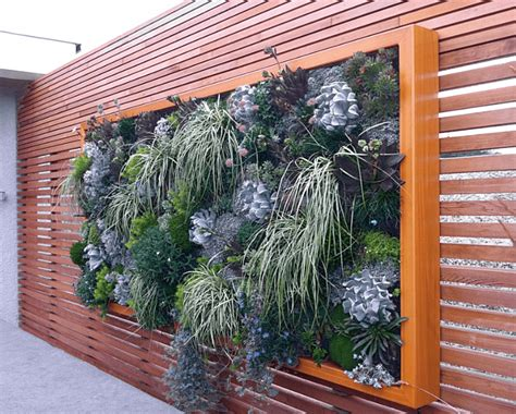 breathtaking living wall designs  creating