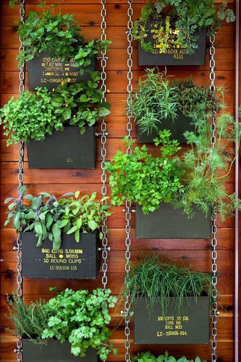 tips  growing herbs indoors  outdoors