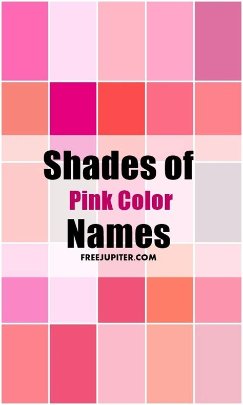 shades of pink best 25 shades of pink names ideas on pinterest colour