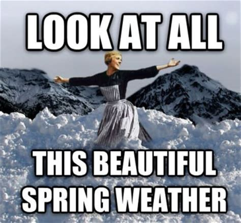 Weather Meme - 25 best ideas about funny weather on pinterest weather